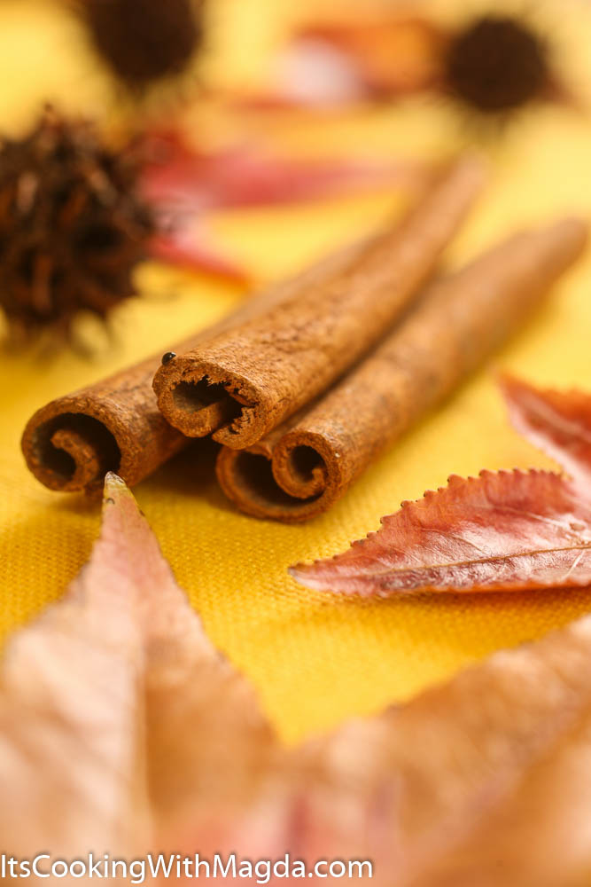 cinnamon sticks, leaves and a small bug